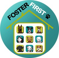 Foster First Logo