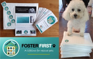 Foster First Packages for Rescues